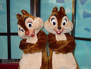 chip and dale desktop wallpaper
